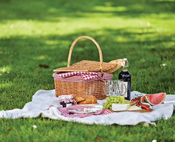 How to choose outdoor picnic equipment